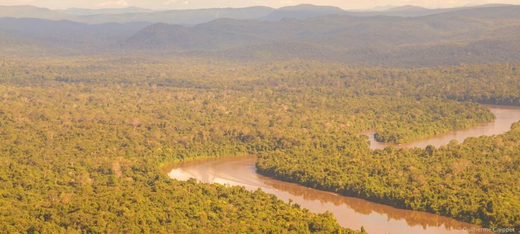Imagem aérea de da Terra Indígena Yanomami, em Roraima, que possui reservas de terras raras. Foto: Funai/Divulgação
