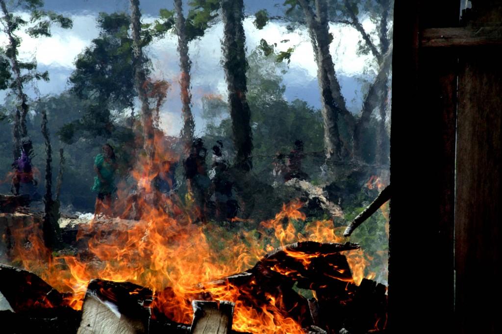 Floresta destruída pelo fogo no Estado do Pará. Foto: Alberto César Araújo
