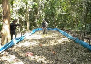 Poço de maceração de folhas de coca na floresta amazônica da região do rio  Javari no Peru. (Foto: Divulgação/Polícia Federal do Amazonas e Polícia Nacional do Peru)