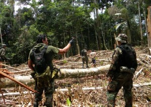 """Em operação na selva policiais prendem """"cocaleros"""" responsáveis pelo cultivo da coca. (Foto: Divulgação da Polícia Federal e  Polícia Nacional do Peru)"""