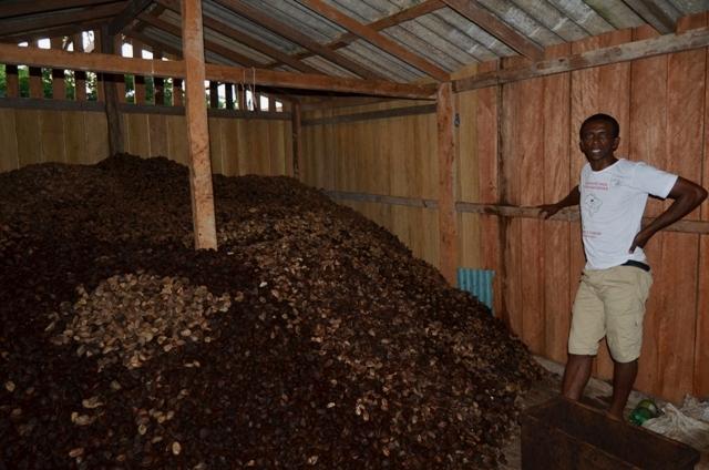 Ivanildo Carmo de Souza, que trabalha em coleta de castanha. (Foto: Emmanuel de Almeida Farias Júnior)