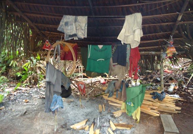 Operação resgata piaçabeiros de trabalho escravo no Amazonas