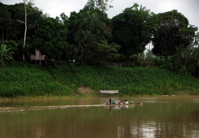 Região do Alto Envira onde vivem os índios Ashaninka (Foto: Sérgio Vale/Secom)