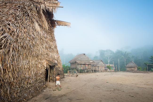 Aldeia Matis Tawaya no Vale do Javari (Foto: Michael Clark)