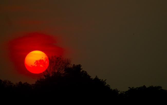 Manaus encoberta por fumaça das queimadas no final de tarde desta quarta-feira (20) (FotoAmazonas: Alberto César Araúujo)