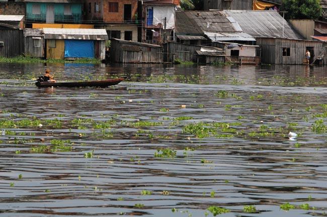 O rio Negro durante a cheia de 2009 (Foto: Alberto César Araújo/Amazôia Real)