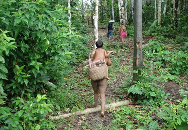 Índios korubo fazem segundo contato em 18 anos no Amazonas