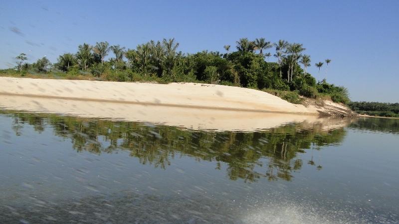 Ministério do Meio Ambiente confirma que governo vai criar áreas protegidas na Amazônia