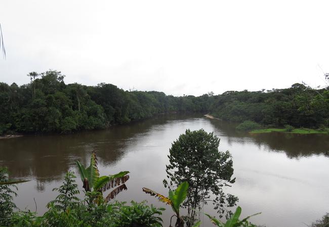 Vista do rio Jaú, da comunidade quilombola do Tambor. (Foto: Elaíze Farias/AR)