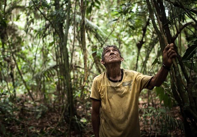 O ribeirinho Chico Catitu se aliou aos munduruku para a abertura da picada. (Foto: Marcio Isensee e Sá)