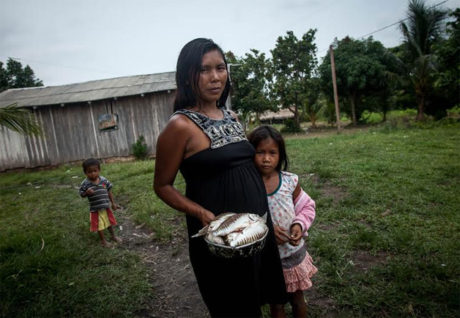 A fonte de alimentação dos munduruku é o peixe e a caça, que devem diminuir drasticamente com a barragem. (Foto: Marcio Isensee e Sá)