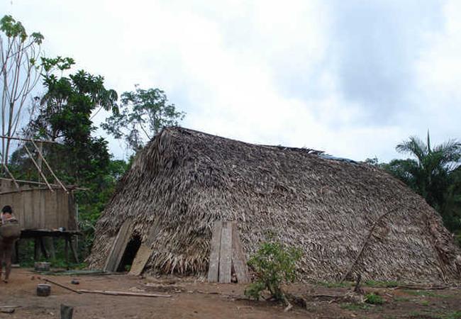 Aldeia de índios korubo no Vale do Javari, no Amazonas (Foto: Funai)