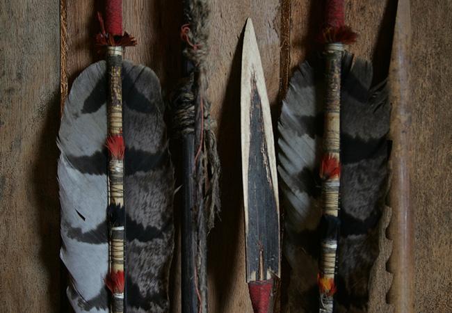 As flechas confeccionadas com penas gavião, pássaro considerado protetor dos Kagwahiva (Foto: Odair Leal/AR)
