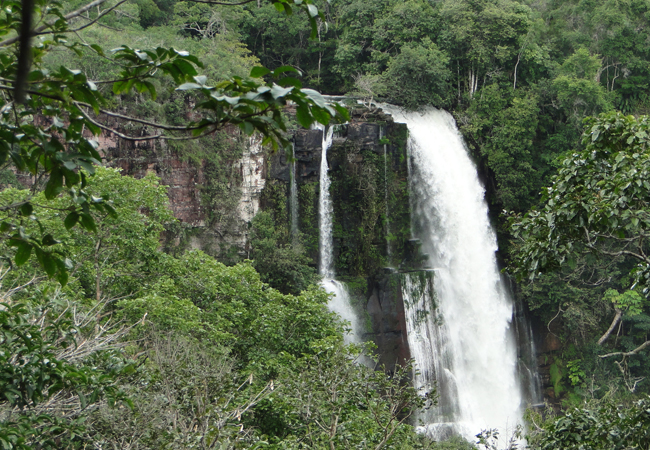 Parque Estadual do Sucunduri, em Apuí,  que tem gestão da SDS (Foto: Izac Theobald)