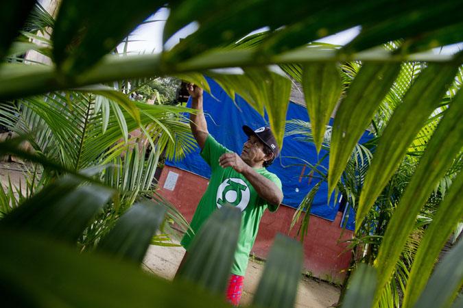 Angelo Araujo da Silva, 55, da etnia munduruku, plantou árvores no local. (Alberto César Araújo/FotoAmazonas)