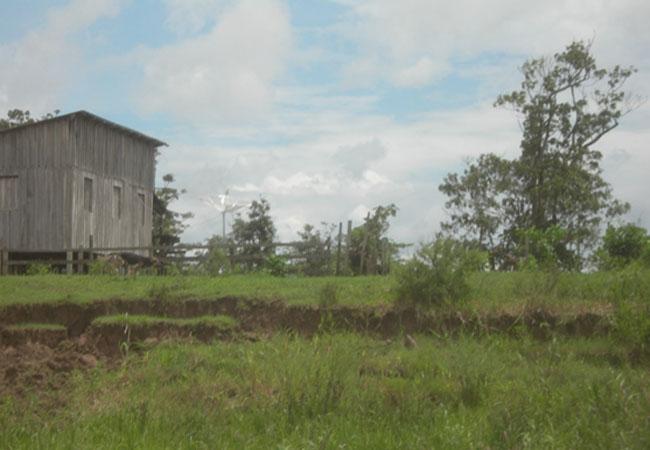 Comunidade rural São João Laguinho, em Parintins (Foto: Floriano Lins)