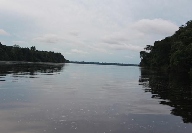 Ministério Público Federal vai monitorar política ambiental do Amazonas