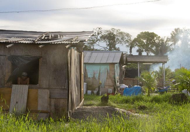 As familias indígenas vivem em ocupação irregular em Manaus. (Foto: Alberto César Araújo)