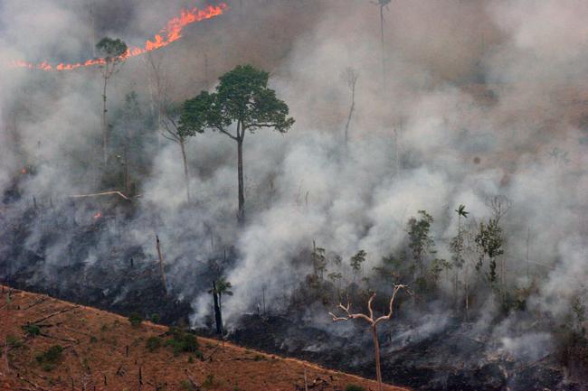 Queimadas degradam a floresta no sul do Pará (Foto: Alberto César Araújo)