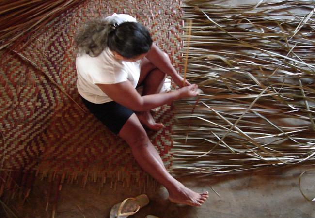 Fundação Vitória Amazônica comemora 25 anos de atividades