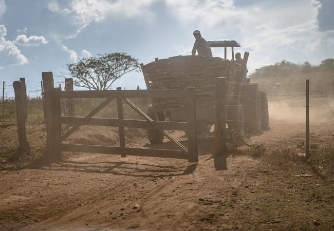 Porteira da Fazenda Santa Elina, na atualidade. (Foto: fotógrafo Gerardo Lazzari)