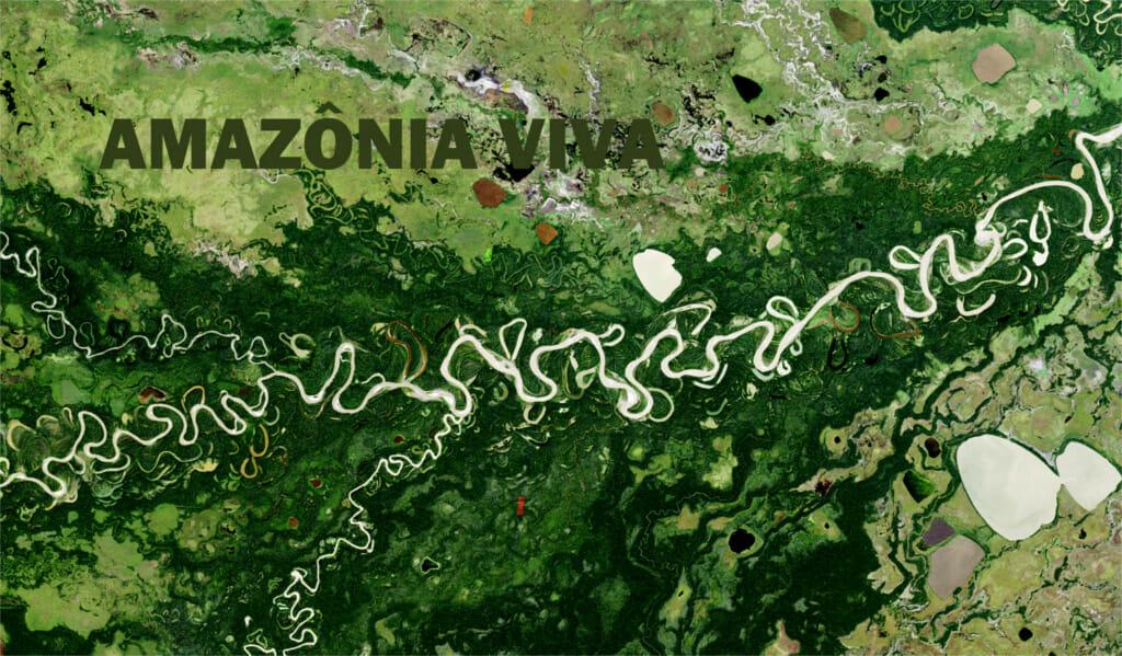 O crédito de carbono da barragem de Santo Antônio: 3 – Subestimação das emissões de hidrelétricas no MDL