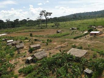 Projeto de Assentamento Florestal Curuquetê, em 2011. (Foto: Ibama)