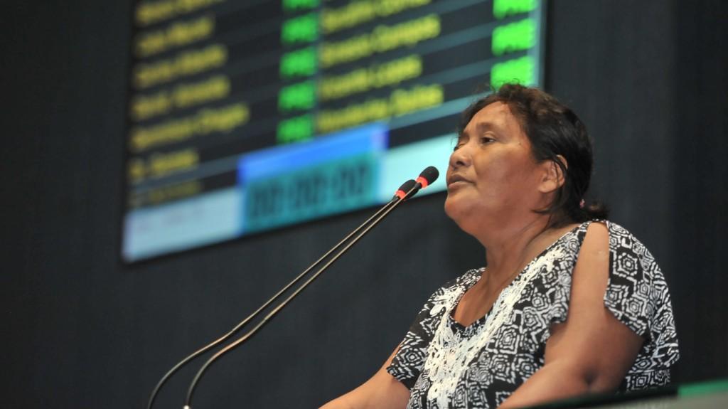 Maria das Dores Priante fez denúncias no plenário da Assembeia Legislativa. (Foto: Alberto César Araújo/Aleam)