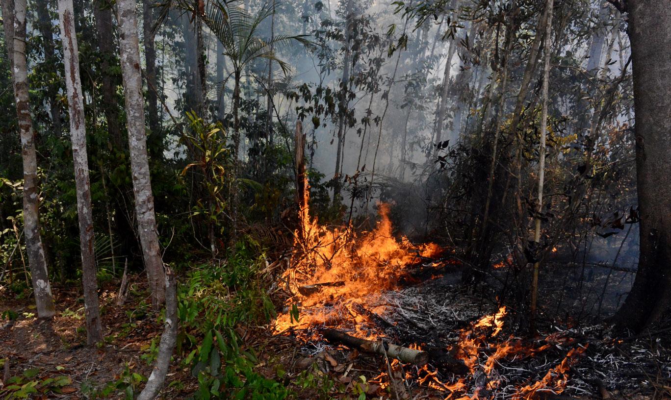 Inpe registrou 95% a mais de queimadas e incêndios florestais em setembro, no Amazonas