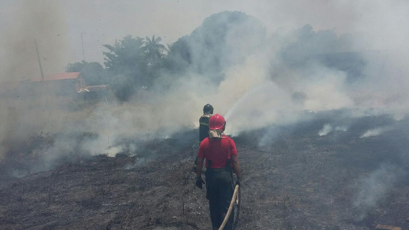 Não adianta culpar o Pará, fumaça em Manaus veio das queimadas no Amazonas, diz Inpe