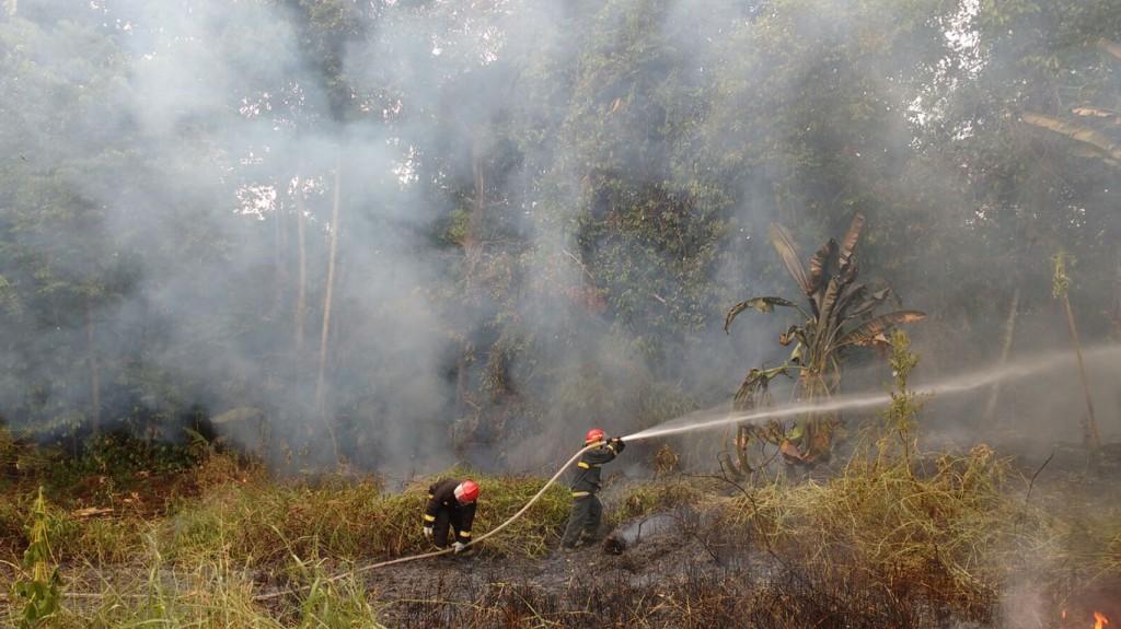 Incêndio em Rio Preto da Eva, região metropolitana de Manaus (Foto: Corpo de Bombeiros)