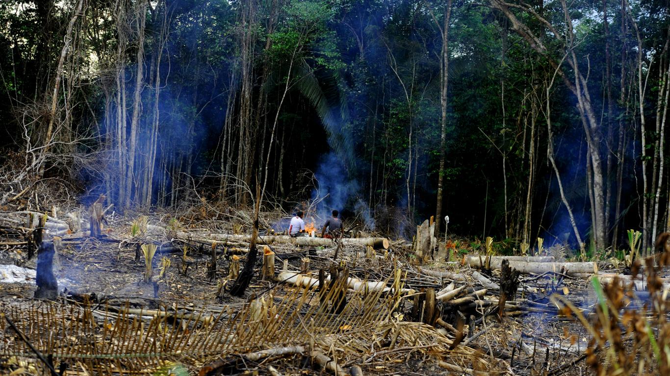 Por trás da alta das queimadas está o desmatamento, que aumentou 88% no Amazonas