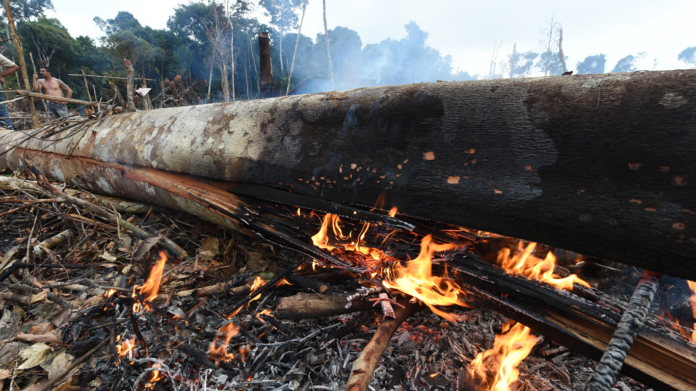 Fogo em região desmatada de Itacoatiara (Foto: Chico Batata/2015)