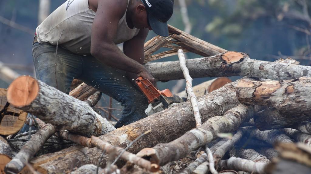 Homem trabalha em área desmatada de Itacoatiara (Foto: Chico Batata/2015)
