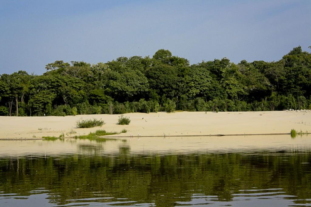 Área do rio Tapauá, que dá acesso à Terra Indígena Banawá, uma das quatro homologadas. (Foto: Oiara Bonilla)