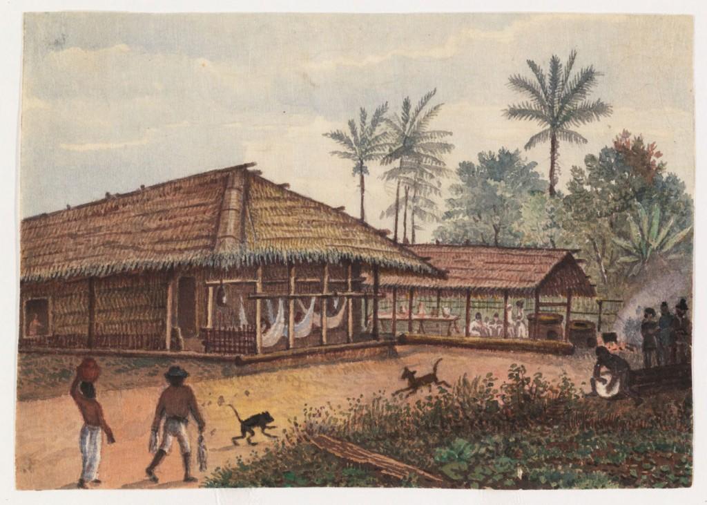 Acampamento em Tefé por. J. Buckhardt. Acervo Iconográfico da Expedição Agassiz
