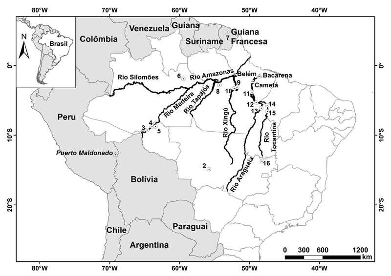 Fig. 1. Locais de barragens mencionados no texto. 1. Itaipu, 2. Manso, 3. Jirau, 4.Santo Antônio, 5. Samuel, 6. Balbina, 7. Petit-Saut, 8. Curuá-Una, 9. Belo Monte, 10. Babaquara, 11. Tucuruí, 12. Marabá, 13. Serra Quebrada, 14. Santa Isabel, 15. Estreito, 16. Serra da Mesa. Circulos representam barragens. Triângulos representam cidades.
