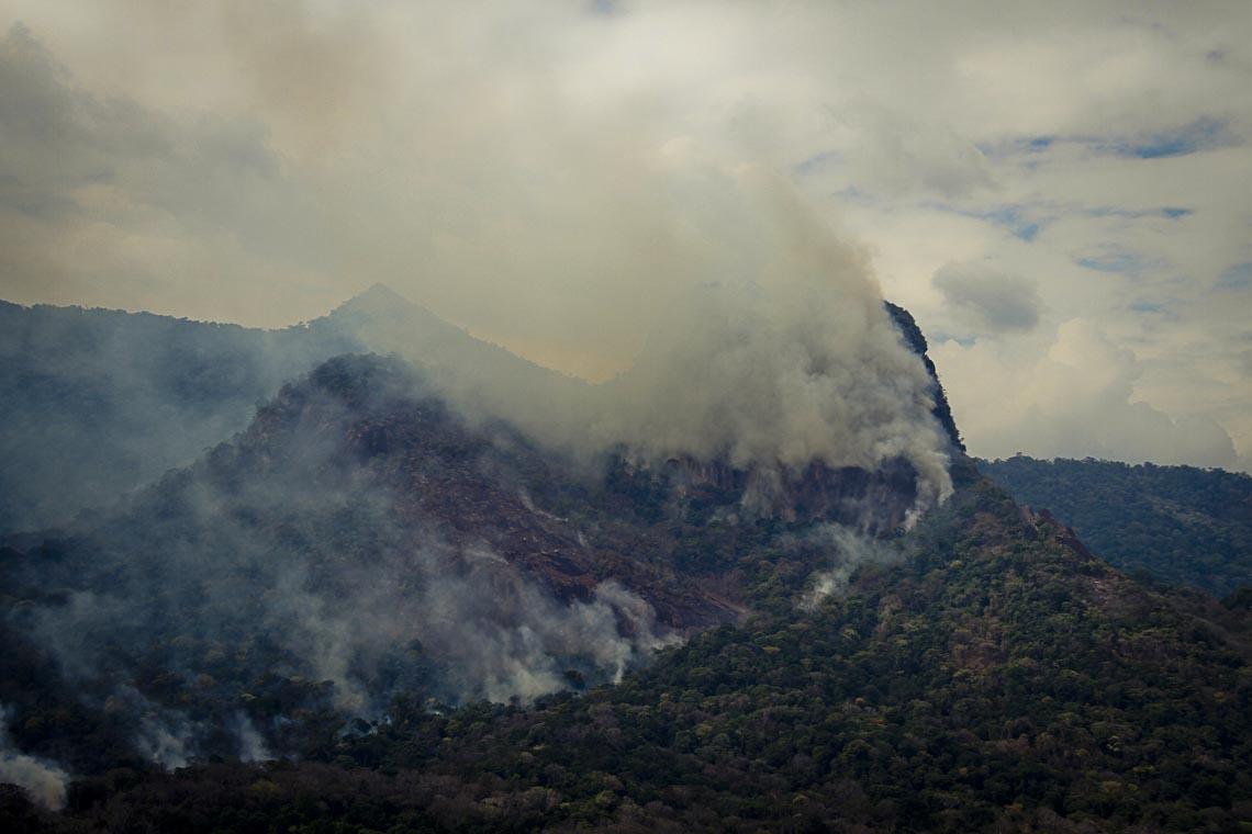 Serra do Demini, na TI Yanomami (Foto:Prevfogo/Ibama-RR)