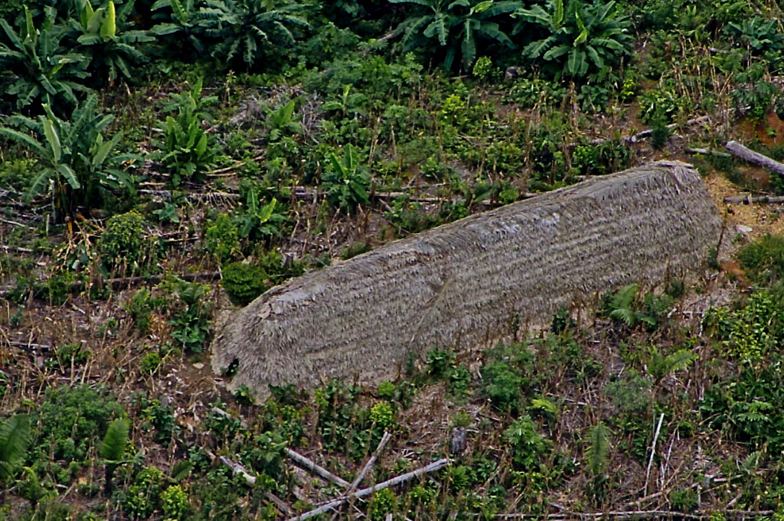 Maloca dos índios Korubo  (Foto: Fabrício Amorim/Acervo CGIIRC Funai, 2012)