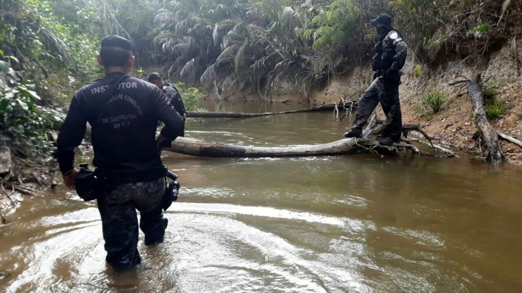 Buscas ao grupo de garimpeiros na reserva do Uatumã. (Foto: Divulgação PC)