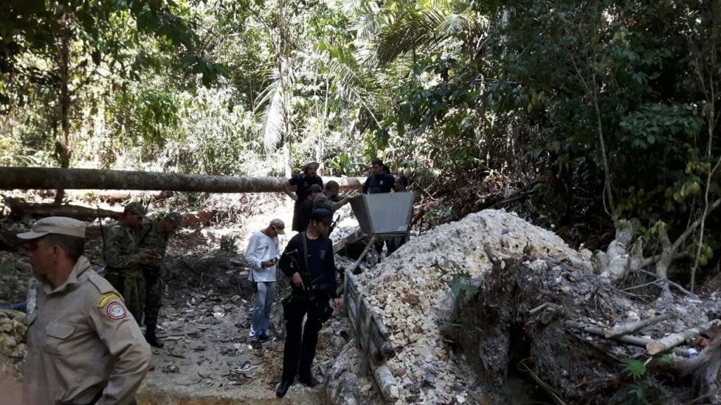 Policiais encontraram diversos crimes ambientais na reserva Uatumã (Foto: Divulgação PC)