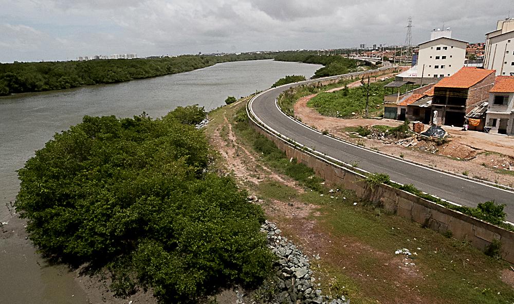 Da lama ao caos: Degradação ambiental ameaça os manguezais do Maranhão