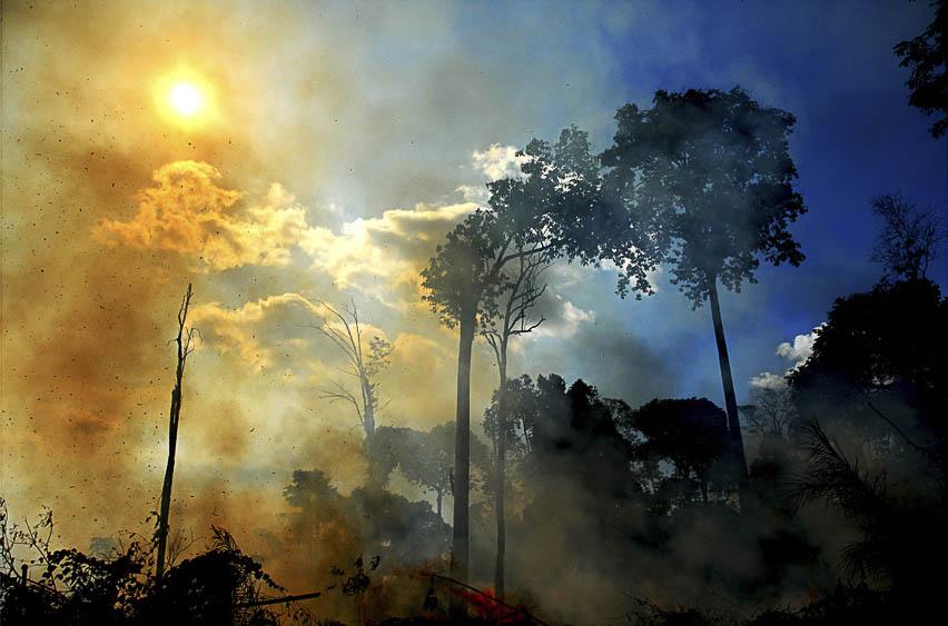 A queimada no Parque Nacional do Viruá em março de 2016 (Foto: Jorge Macêdo/AmReal)