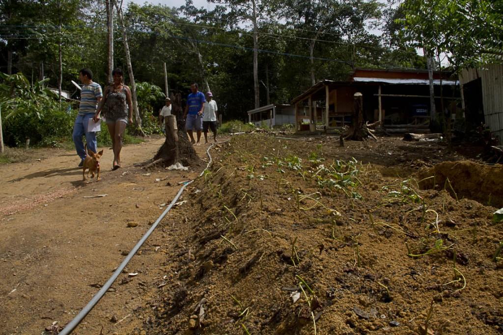 Índios vivem na área desde 2014 (Foto: Alberto César Araújo/Amazônia Real)
