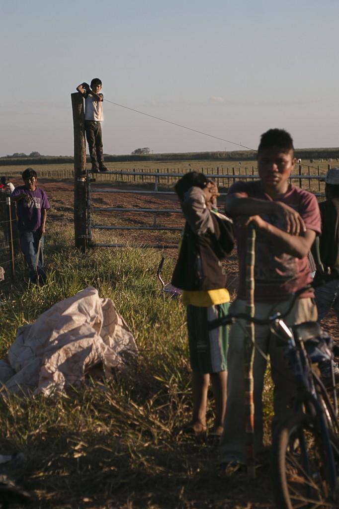 Indígenas Guarani-Kaiowá na retomada da fazenda Novilho, Caarapó (Foto: Ana Mendes/Cimi)