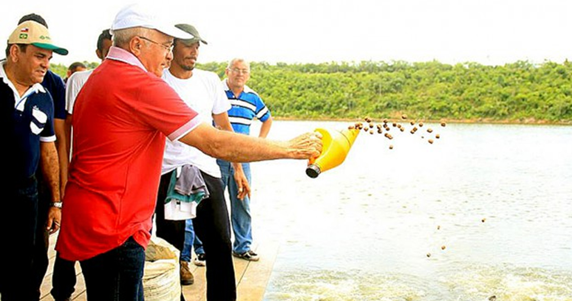 Peixes exóticos: Lei foi relatada por deputado ligado a piscicultura no Amazonas