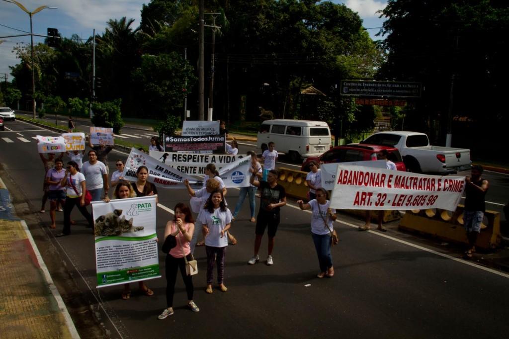 Protesto contra a morte da onça Juma no dia 25 de junho (Foto: Alberto César Araújo/Amazônia Real)