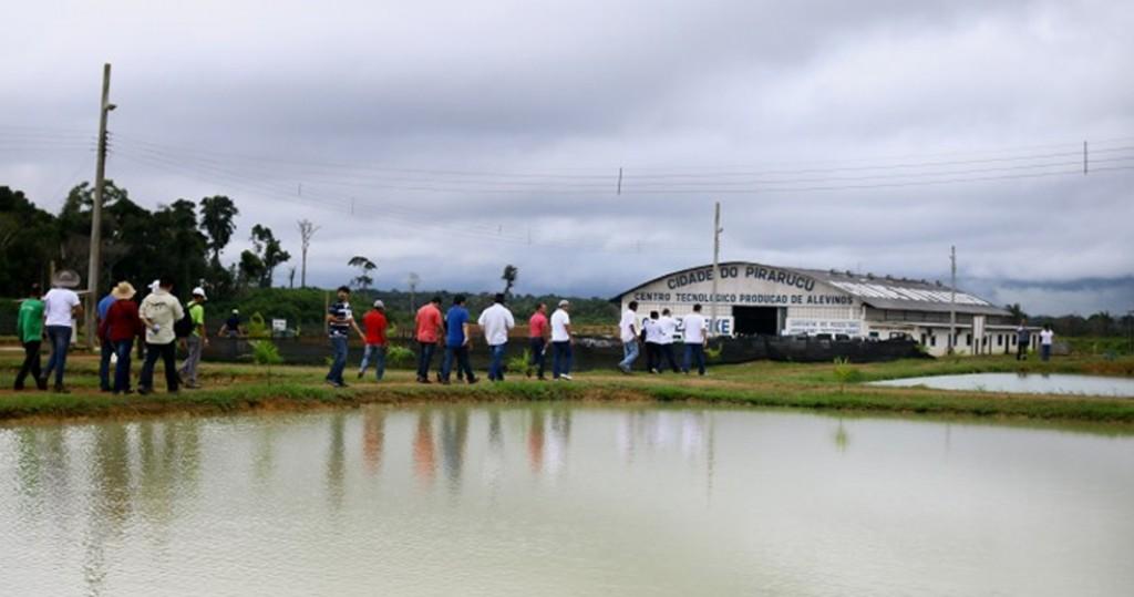 Cooperpeixe fica em Manacapuru, no Amazonas (Foto: Embrapa)