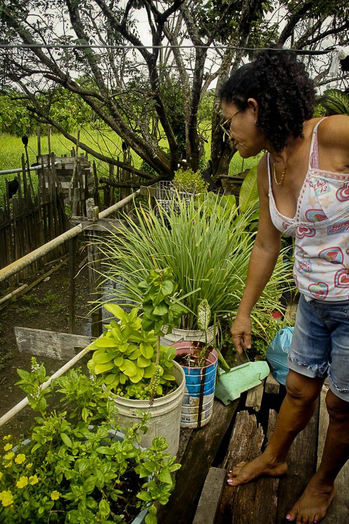 Dona Nete do São Francisco e suas ervas medicinais (Foto: Floriano Lins)