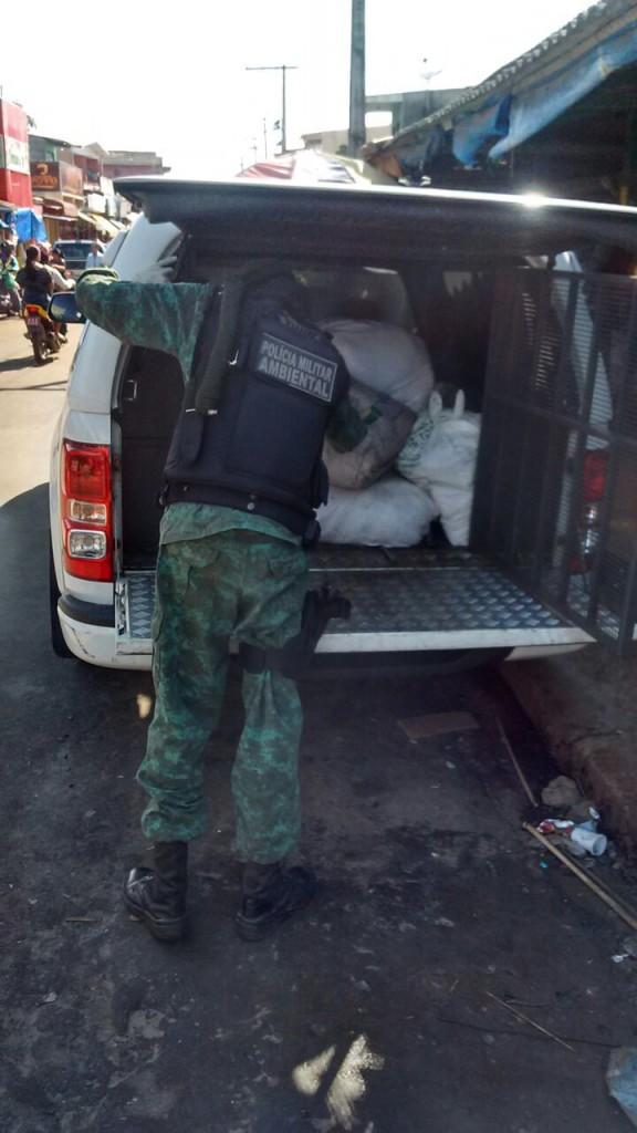 Policiais do Batalhão Ambiental apreendem pescado. (Foto: Batalhão Ambiental)